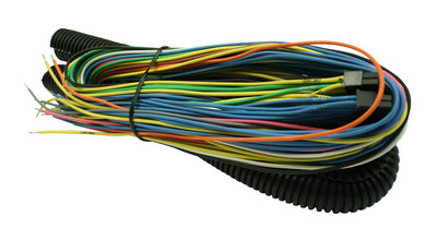 24' Fuel/Igntion Controller Flying Lead Harness